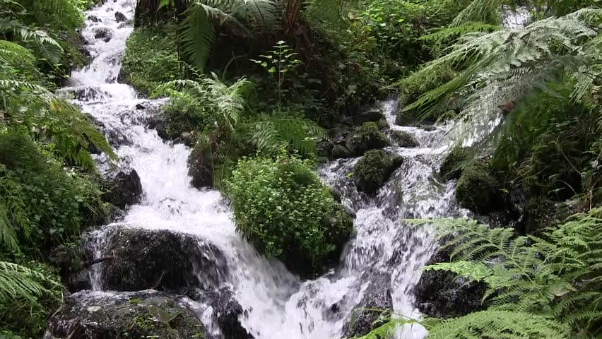 Two fast flowing streams converging into one as they  cascade down a mountain.  - HD stock footage clip