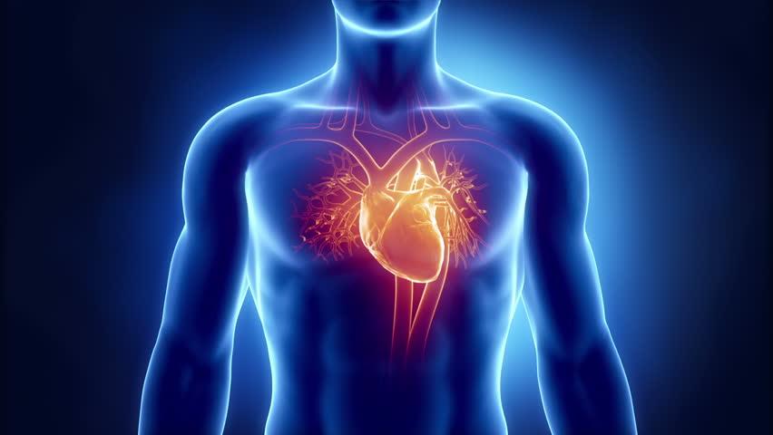 Human heart problem