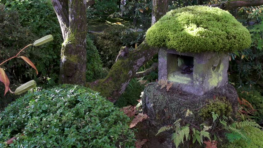 A mossy stone lantern with coins in it in a traditional Japanese garden at Nikko. - HD stock video clip