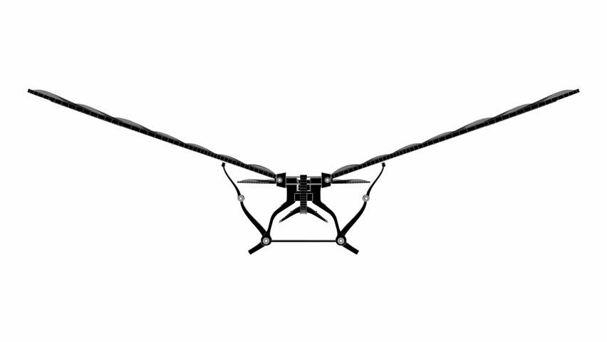 Leonardo Da Vinci Antique Flying Machine Black White Animation 02