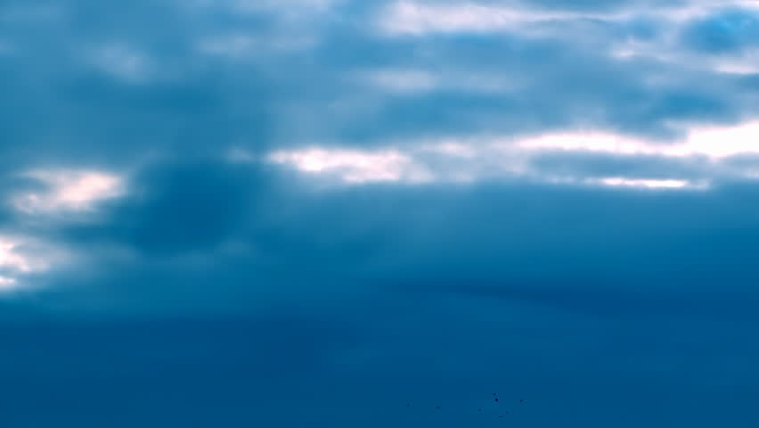 This is a beautiful natural video of Flying Flock Of Birds (Doves) In Magical Blue Sunset Sky...You can use this slow motion video in your original projects or as websites background…Enjoy! - HD stock video clip