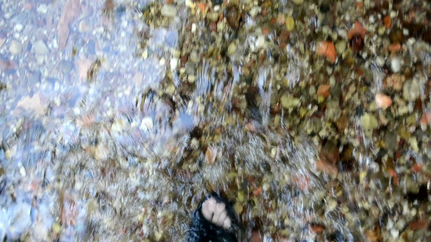 legs with flip-flop shoes walk imitation through forest park brook stream water flow - HD stock video clip