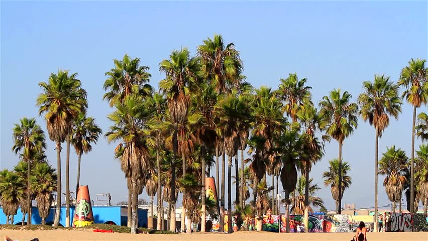 Beach scene on September 19, 2012 at Venice Beach, Los Angeles, California, USA. Venice Beach is is known for its canals, beaches and circus-like Ocean Front Walk. - HD stock video clip