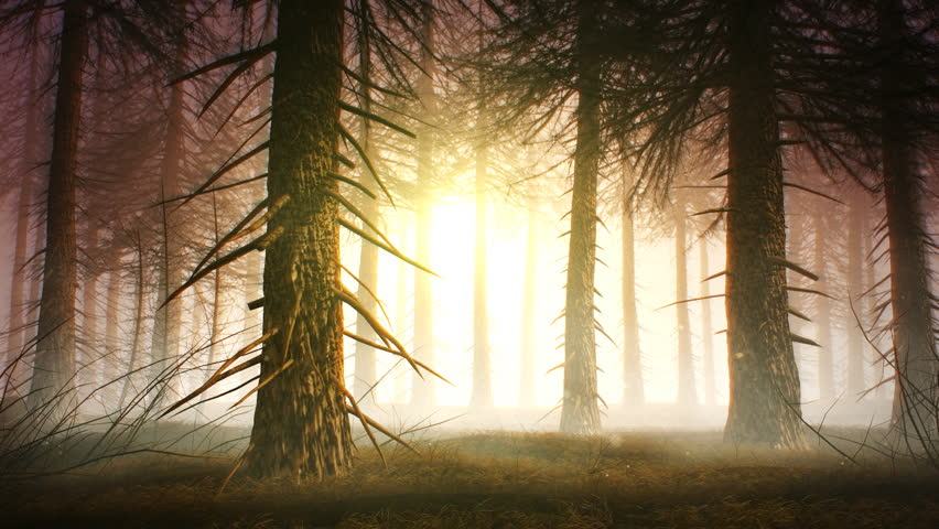 Spooky forest. 3d animated background - HD stock video clip