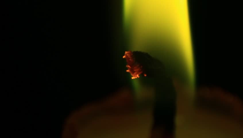Candle extreme macro. Green tinted. - HD stock footage clip