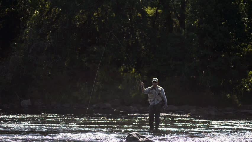 A wide shot of a man in waterproof overalls as he stands in a river and casts his lure with his rod while he spends his day fly fishing.
