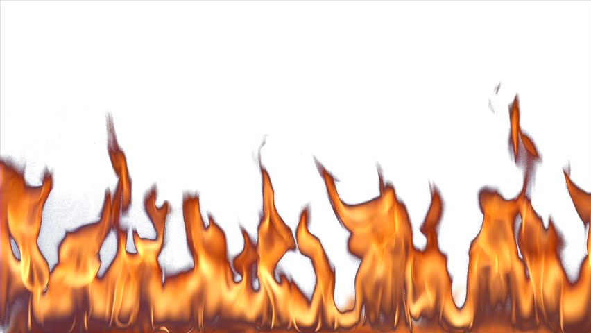 fire on white background fire against a white background tall flames stock footage 7873