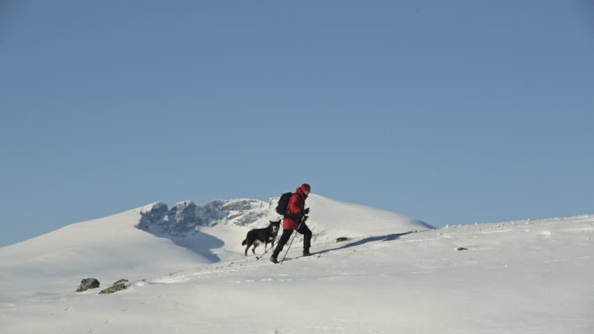 Woman and Dog mountain skiing