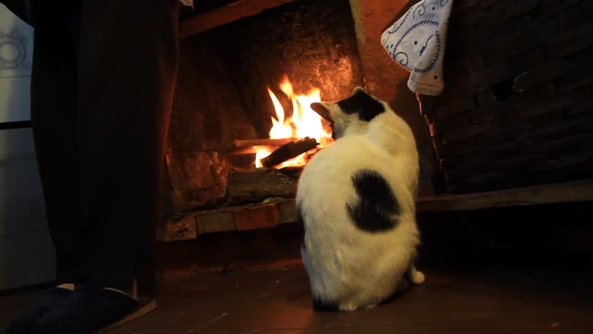 Sleepy cat by the fireplace warming up - HD stock video clip