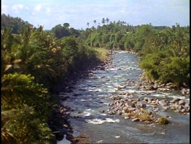 Bali tropical jungle, green, lush rainforest, river, wide shot