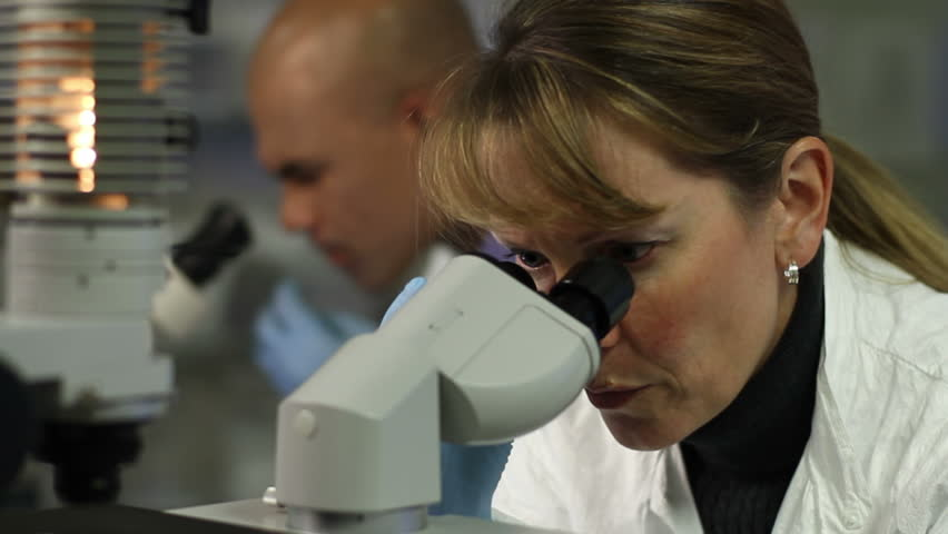 Two scientists carry out research, looking through microscopes. Close up shot with a dolly move and female scientist in foreground.