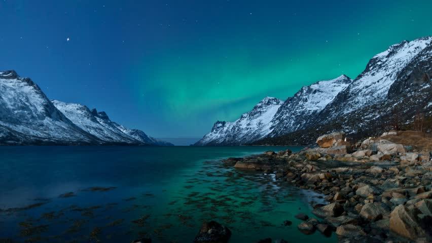 Northern Lights (Aurora borealis) over the ocean in Norway #3744398
