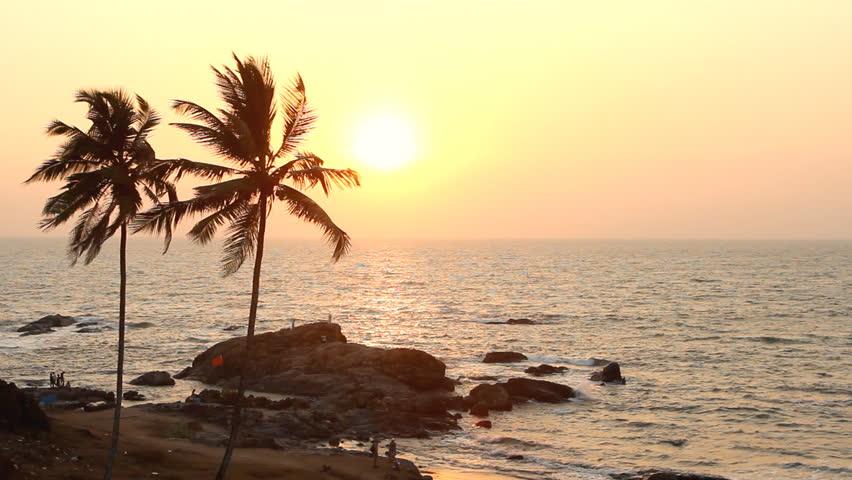 India Goa Vagator beach February 20, 2013. Palm Trees Silhouette At Sunset #3756134
