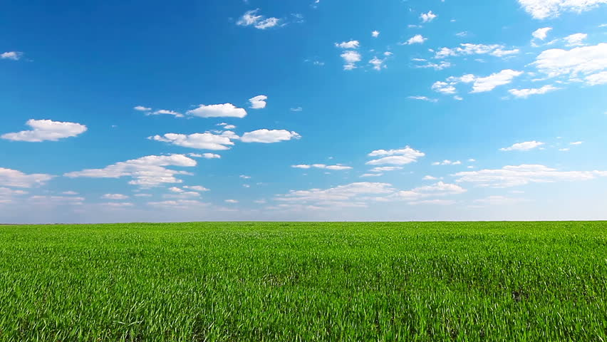 green field and cloudy sky - HD stock video clip