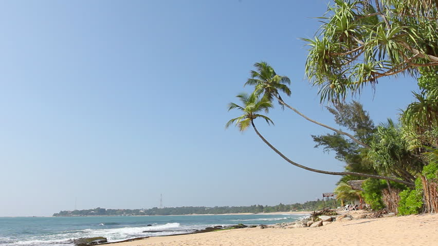 Tropical white sand beach with coconut trees, blue sky and sea. - HD stock video clip