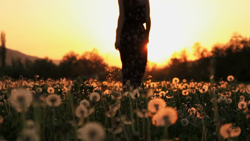Beautiful Female Model in a Pink Dress Passing Throug Dandelion Field at Sunset