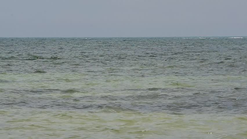 A jet ski in the Atlantic Ocean off Key West, Fl., races by from left to right.   Shutterstock HD Video #4252889