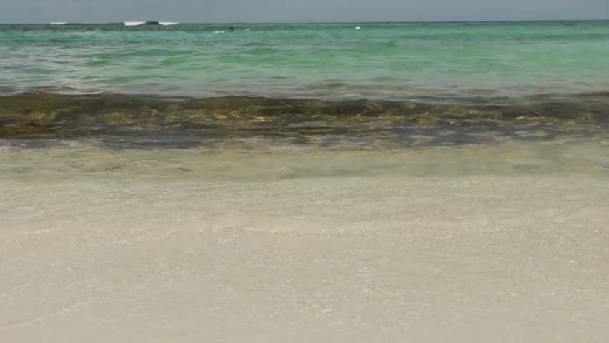 Tropical Coral Reef Beach - HD stock footage clip
