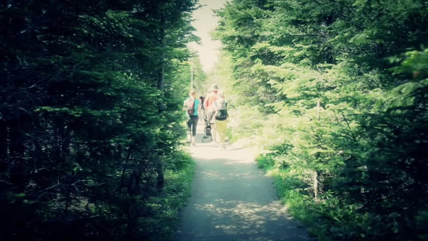 A young family with toddlers hiking along the skyline trail in Cape Breton Nova
