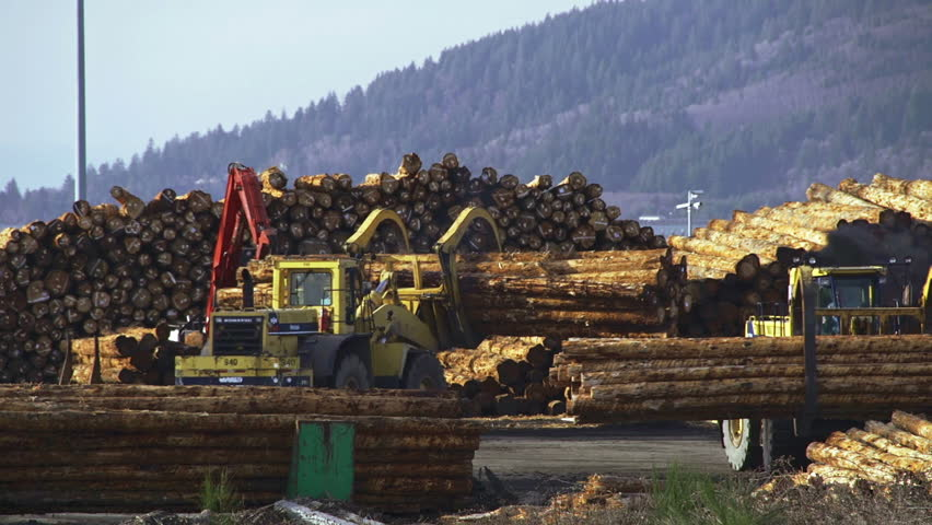 ASTORIA, OR - March 2013 - Grapple loader moving timber logs for shipment on an