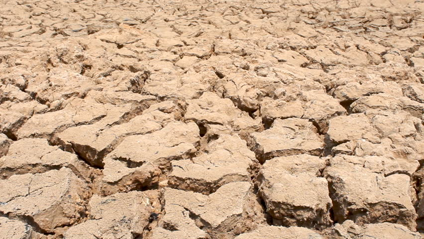 Dolly shot of cracked dry earth