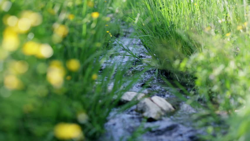 Low angle shot of water stream in spring - HD stock video clip