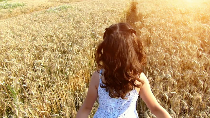 Little girl running cross the wheat field at sunset.Slow motion,high speed camera - HD stock video clip