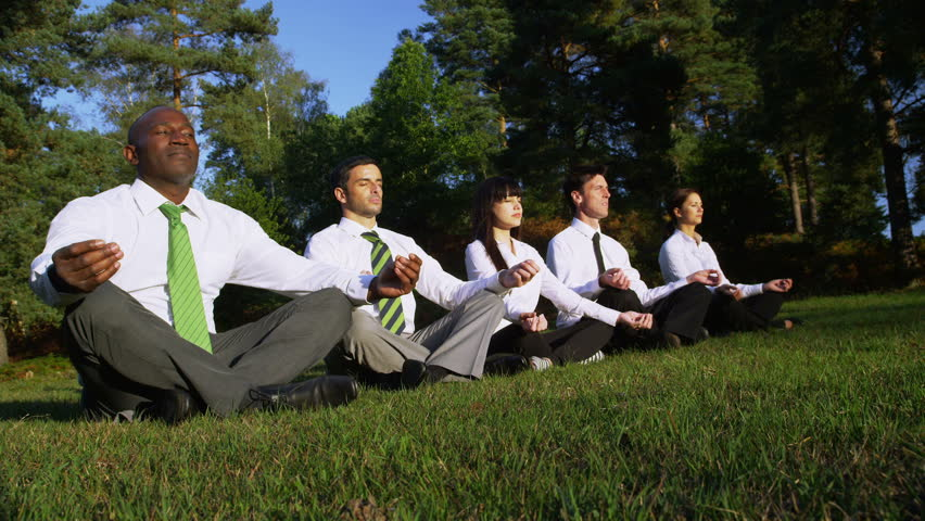 Business team meditating with Yoga positions. Corporate businessmen and businesswomen surrounded by summer trees and grass. Corporate responsibility concept. - HD stock footage clip