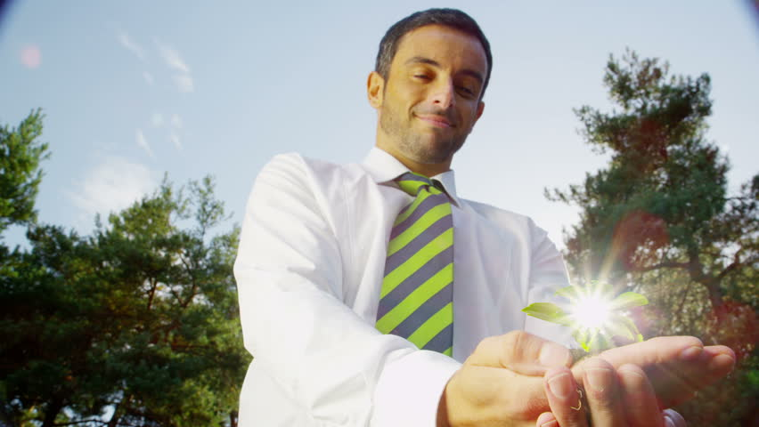 Businessman holding seedling plant. Green shoots environmental business concept in nature. - HD stock footage clip