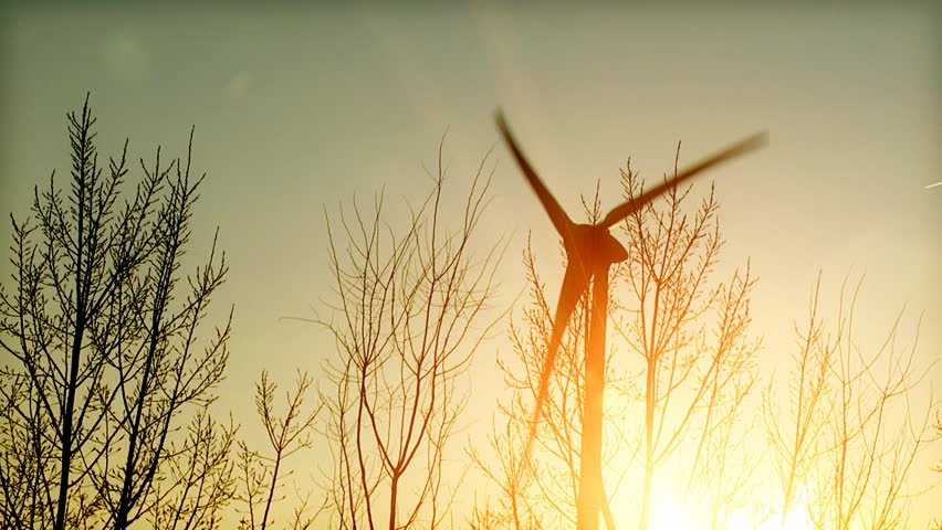 Wind turbine in the sun