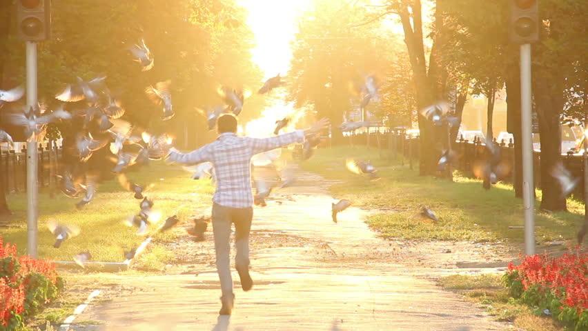 Crazy happiness running scaring birds hopping enjoying sunlight