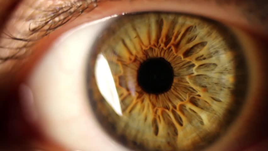 Macro shot of woman's eye blinking