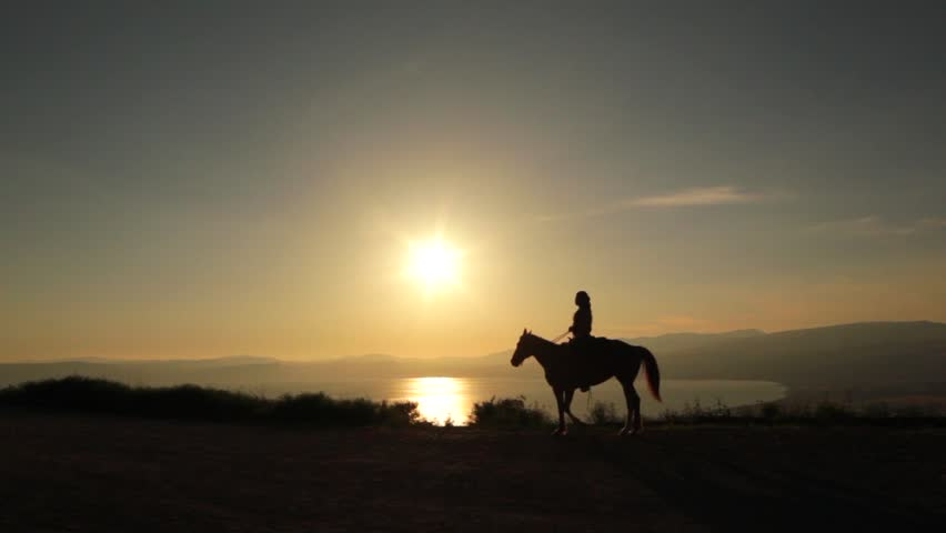 Silhouette of a horse rides off into the sunset