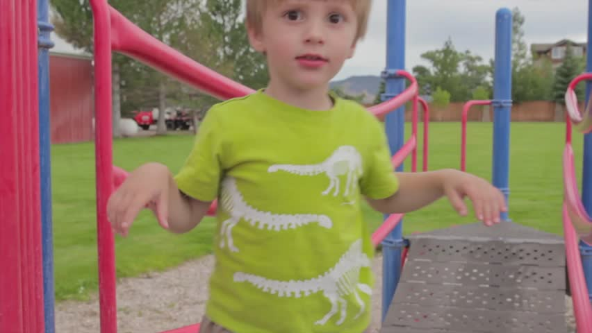 A little boy playing at the park on the playground | Shutterstock HD Video #4613564