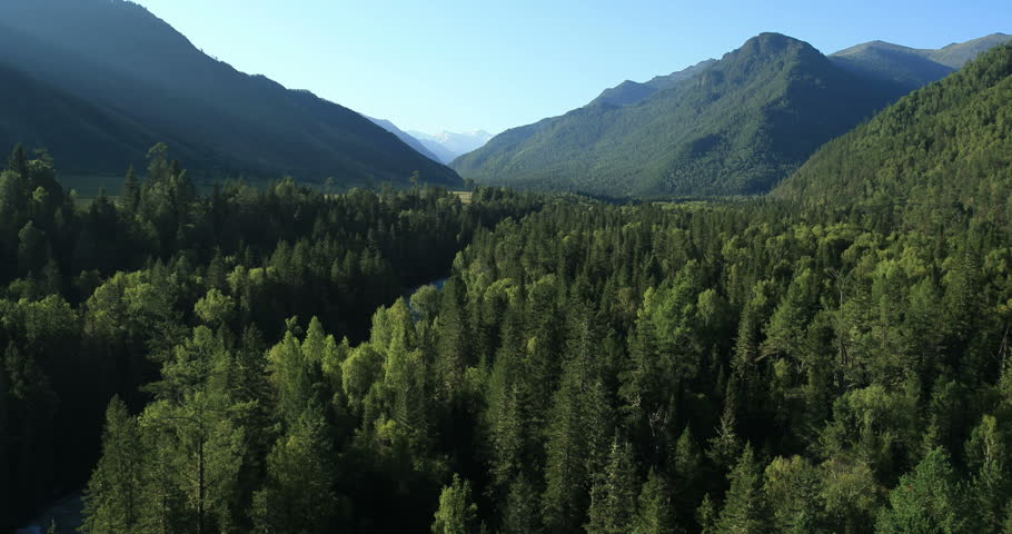 Aerial View. Flying over the beautiful mountain River and beautiful forest. Aerial camera shot. Landscape panorama. Altai, Siberia. | Shutterstock HD Video #4672253