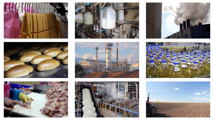 Industrial production, sugar factory, processing of corn, construction, agriculture, green beans, wheat, paving, bakery, dairy farm, poultry meat, oil industry, hot dogs,quarry, chicken farm.Timelapse montage - HD stock footage clip
