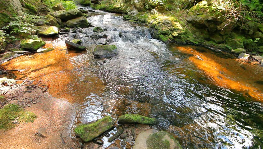 River runs over boulders in the primeval forest - HD stock footage clip