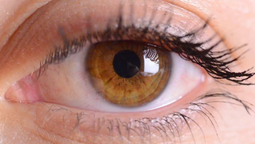 eye macro...zoom in - HD stock footage clip