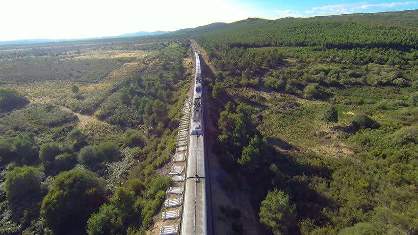 Aerial view of train over railway in the forest