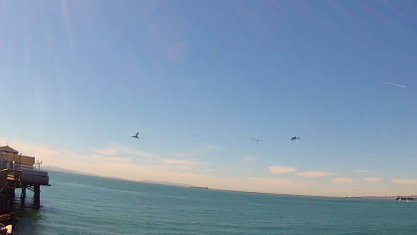In slight slow motion, three pelicans fly over the ocean and then together dive