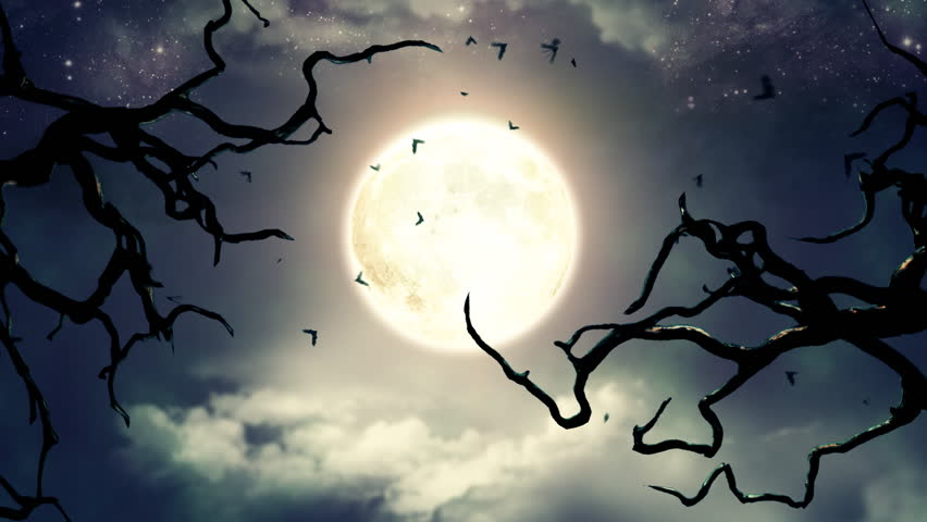 Flying bats in the light of spooky Moon - LOOP | Shutterstock HD Video #4908746