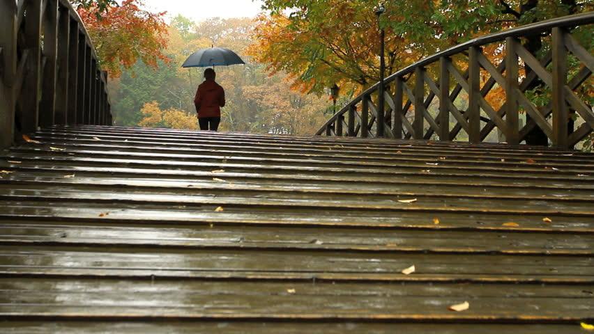 Rainy weather. A woman under an umbrella walks across the bridge.