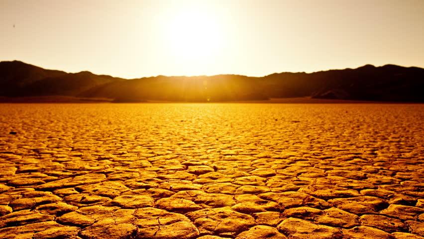 Pan of Skull on the Desert Floor - Death Valley - 4K UHD, Ultra HD resolution - 4K stock footage clip