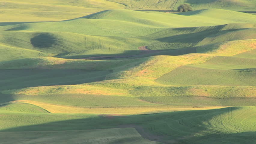 Large landscape view of the Palouse, Washington area from Steptoe Butte, zoom out - HD stock footage clip
