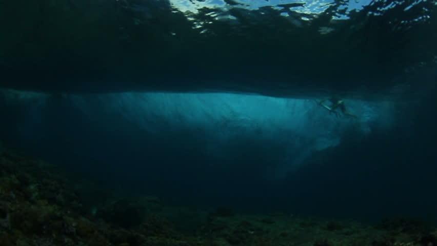 Underwater Ocean Wave With Surfer