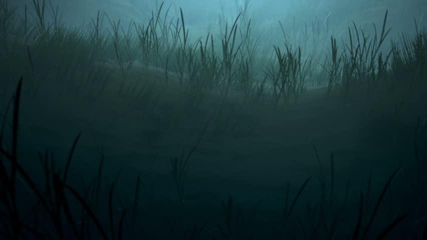 Creepy Ocean Footage Stock Clips