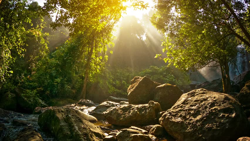 Video 1920x1080 - Waterfalls in Phnom Kulen National Park - HD stock footage clip