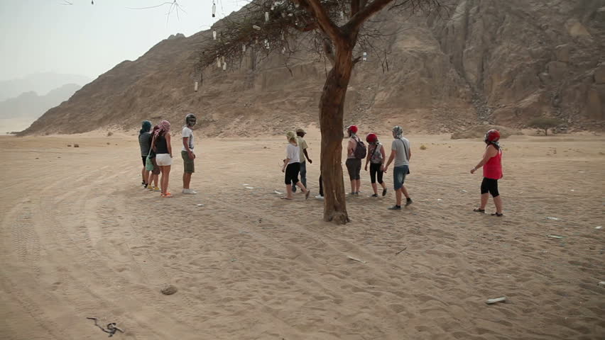 EGYPT, SAFARI - JUL, 2013: Group of tourists is gathered around the tourist guide under the tree in desert - HD stock video clip