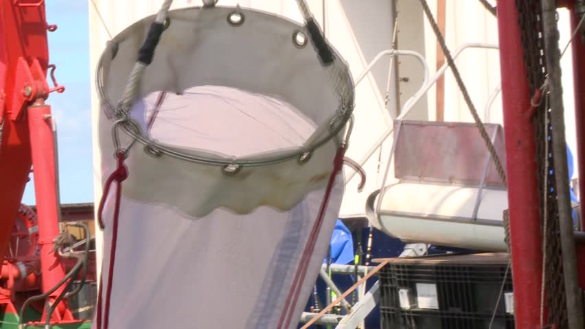 Simple Plankton Nets To Pick Zooplankton Stock Footage Video ...