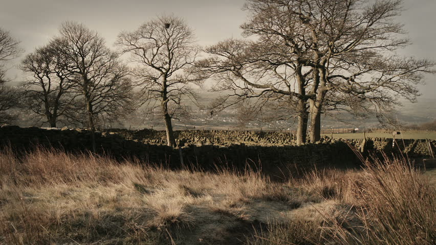 Dolly shot of a English rural scene HD Stock Footage. Full HD. Color Graded. Blackmagic Cinema Camera.